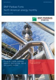 BNP Paribas Fortis North American energy monthly - Virtual Metals