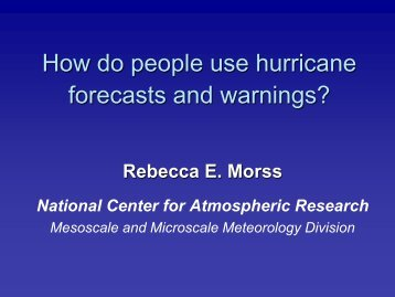How do people use hurricane forecasts and warnings?