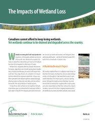 The Impacts of Wetland Loss - Saskatchewan Prairie Conservation ...