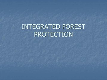 INTEGRATED FOREST PROTECTION