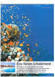 Presseartikel herunterladen (PDF - 623 KB) - The Breakers Diving ...