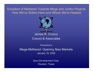 James R. Crocco Crocco & Associates Mega-Methanol - Zeus ...