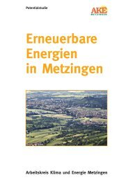 4.2.Energie aus Geothermie - auf den WWW-Seiten des AKE ...