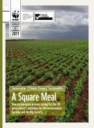 A Square Meal - summary - WWF UK