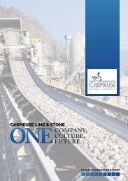 ONecOmpaNy, culture, future. - Business Review USA