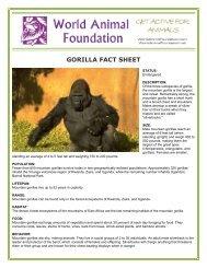 GORILLA FACT SHEET - World Animal Foundation