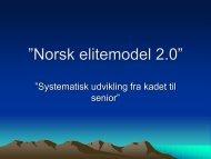 Norsk udviklingsmodel