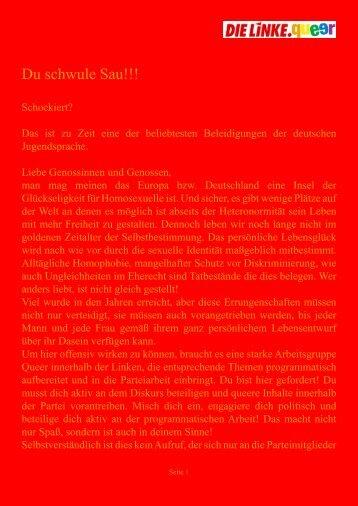 Du schwule Sau!!! - DIE LINKE. Schleswig Holstein