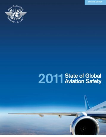 State of Global Aviation Safety - George Hatcher's Air Flight Disaster