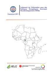 Du SIE-Cameroun au TIPEE - HELIO International