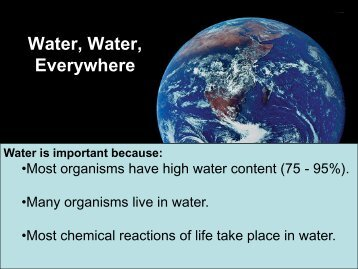 marine biology physical properties of water ch 3 questions key