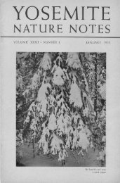 "YNN 32(1) (January 1953) [PDF] ""Fir branches and snow ... - Yosemite"
