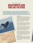 Tale of a Whale (and Why It Can Be Told) - Smithsonian Education - Page 4