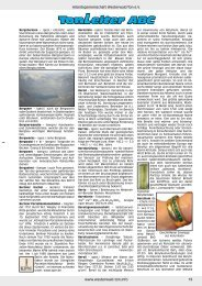 www.westerwald-ton.info Arbeitsgemeinschaft Westerwald-Ton e.V. 19