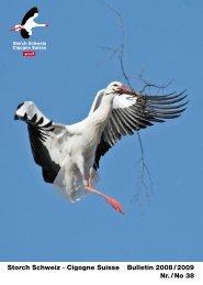 Storch Schweiz · Cigogne Suisse Bulletin 2008 / 2009 Nr. / No 38