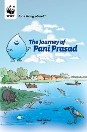 The Journey of Pani Prasad I