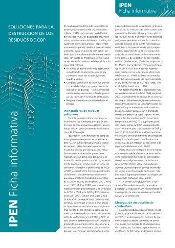 IPE N Ficha informativa