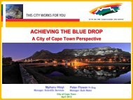 The City of Cape Town's Role in Creating a Better Life for All - MILE