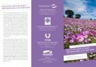 weitere Infos als PDF! - Trauerbegleitung