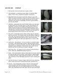 MILLENNIUM - DMC-News The DeLorean Mailing List - Page 5