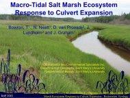 Macro-Tidal Salt Marsh Ecosystem Response to Culvert Expansion