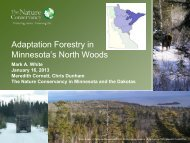 Adaptation Forestry in Minnesota's North Woods - University of ...