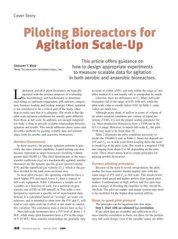 Piloting Bioreactors for Agitation Scale-Up - CMBE