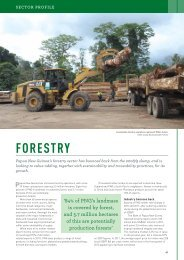 Cloudy bay sustainable forestry - Business Advantage International