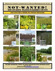 (MN) Flyer - Midwest Invasive Plant Network