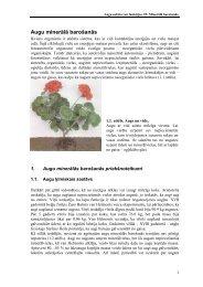 Augu minerālā barošanās
