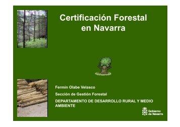 certificación forestal en navarra - sostenibilidad forestal