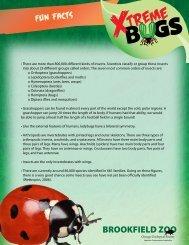 Bug Fun Facts - Brookfield Zoo