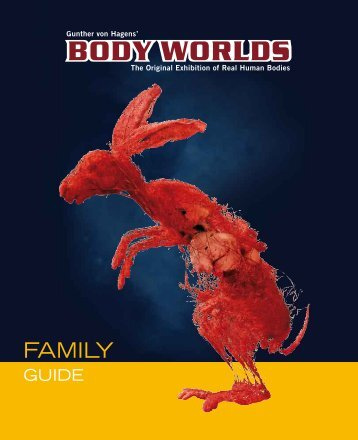 Family Guide - Body Worlds