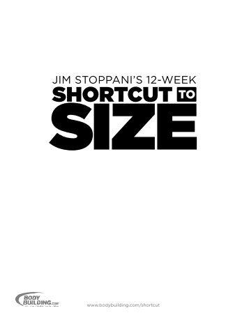 Six Pack Shortcuts Workout Manual