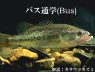 2014-sp-d1-bus-review
