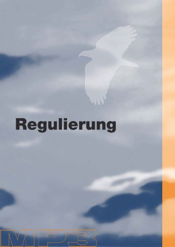 Regulierung - Mp3