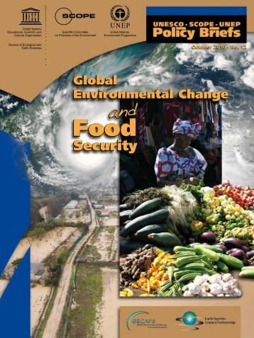 Global environmental change and food security