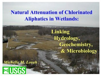 Natural Attenuation of Chlorinated Aliphatics in Wetlands: Linking ...