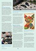 Das Altenzentrum St. Josef ganz im Zeichen des ... - pasos - Page 2