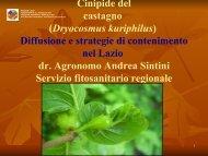 Presentazione-Cinipide-16marzo - Agricoltura - Regione Lazio