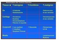 Classification nomenclature - ClubOrtho.fr