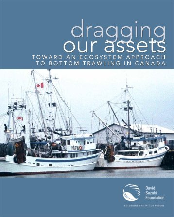 Toward an Ecosystem Approach to Bottom Trawling in Canada