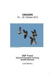 Ungarn 2012.pdf - DOF Travel