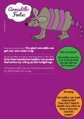 Armadillo Facts: - Motlies - Page 2