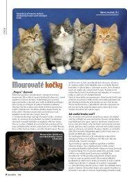 Mourovaté kočky - Nakladatelství MINERVA CZ