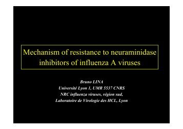 Mechanisms of Resistance – Dr Bruno Lina - Isirv.com