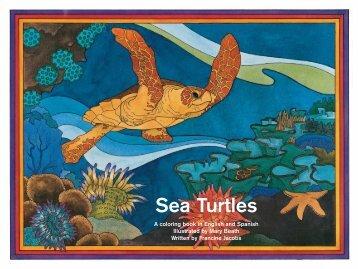 Sea Turtles - WIDECAST