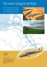 De steur terug in de Rijn - ARK Natuurontwikkeling