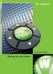 Aiming for the Future - Wieland Electric