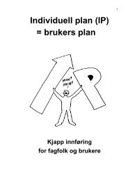Individuell plan (IP) = brukers plan